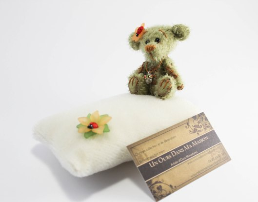Mon petit ourson -Ladybird- par un ours dans ma maison (1 sur 1)-2