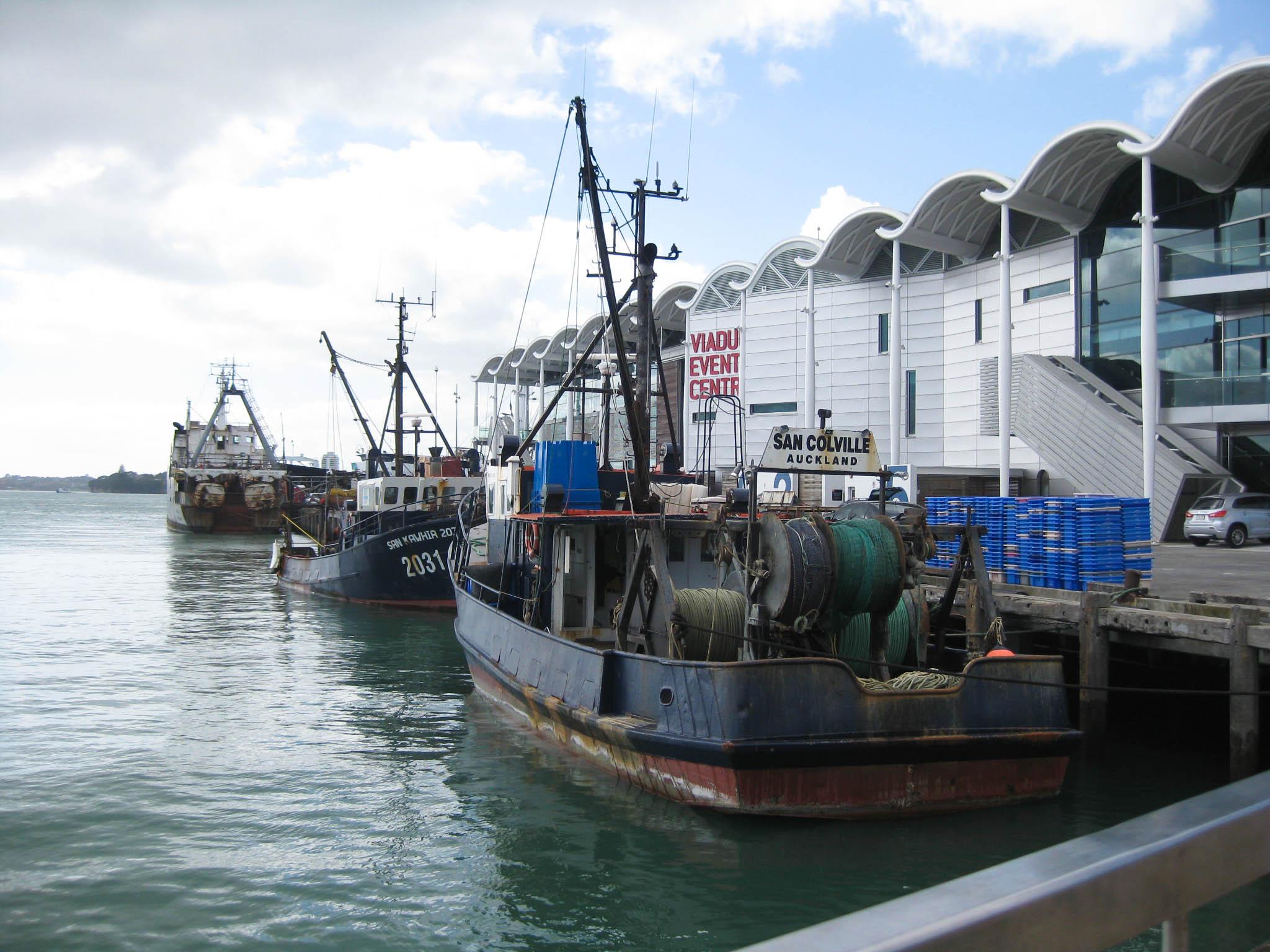 Nouvelle Zélande #1 - Auckland - les lubies de Louise (6 sur 19)