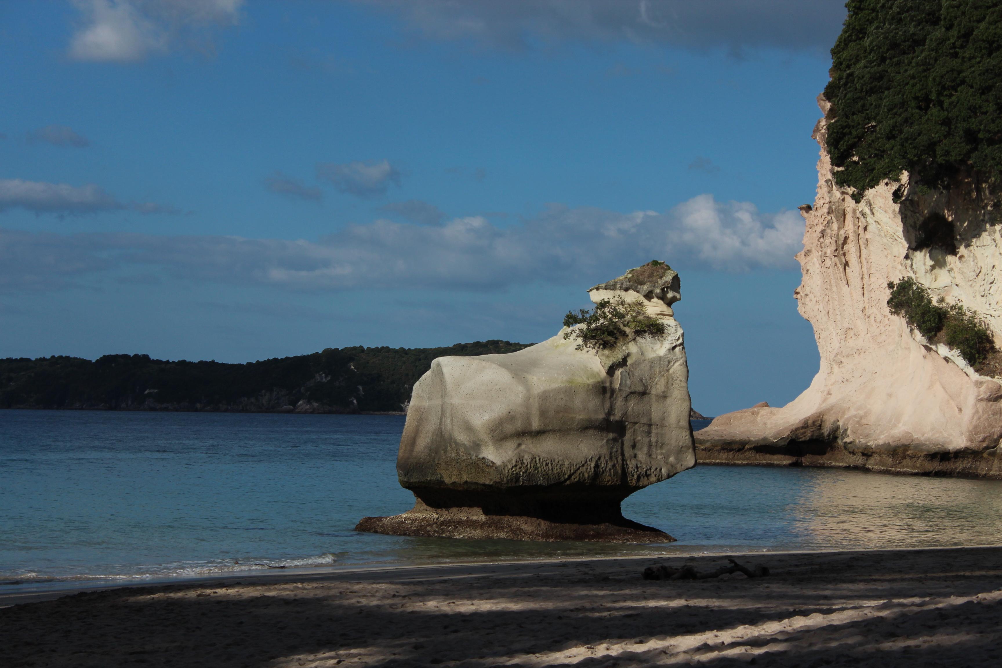 Nouvelle Zélande - Cathedral Cove - Les lubies de Louise (5)