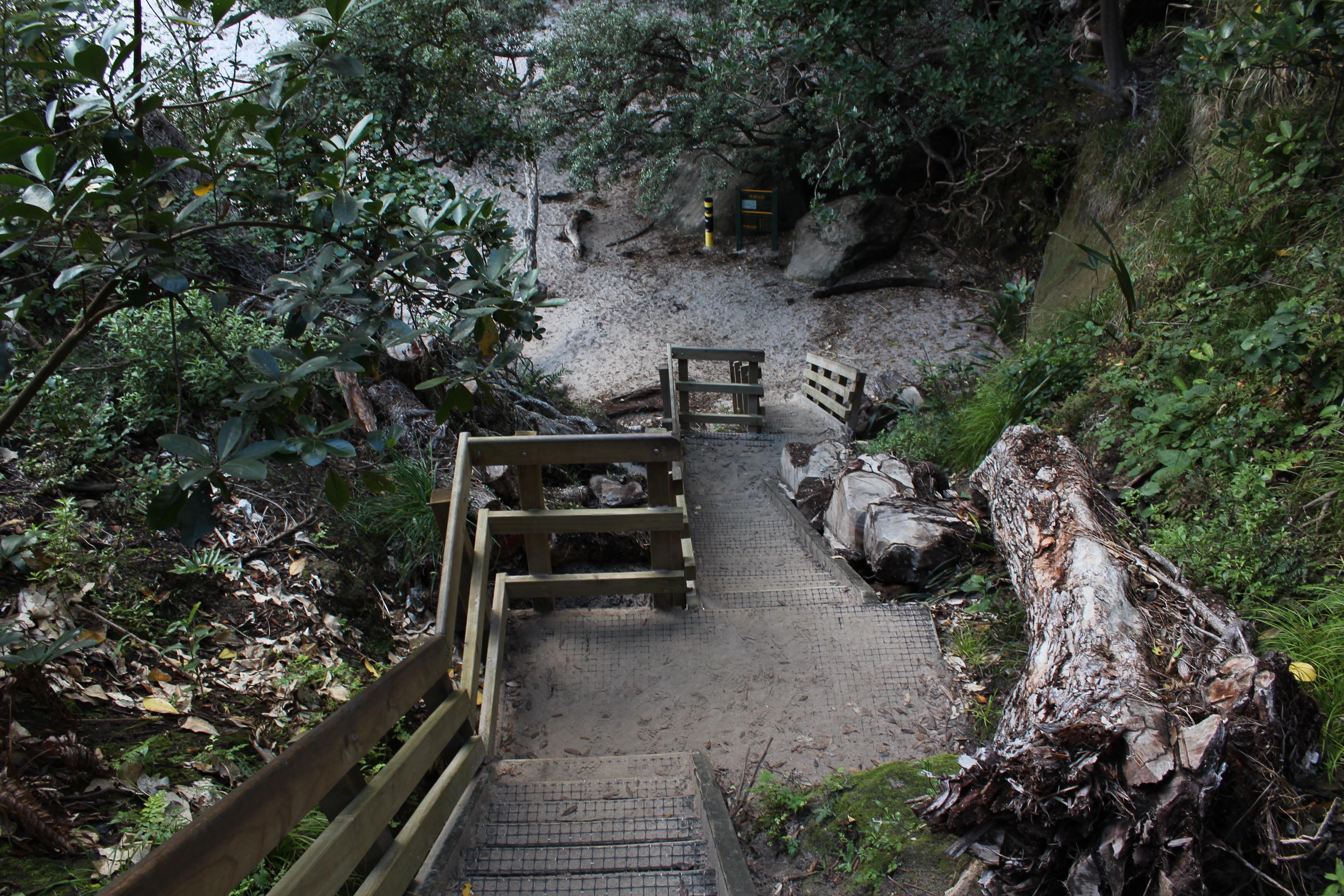 Nouvelle Zélande - Cathedral Cove - Les lubies de Louise (6)