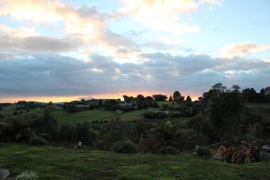 Nouvelle zélande - Kiwi House - Les lubies de Louise (1)