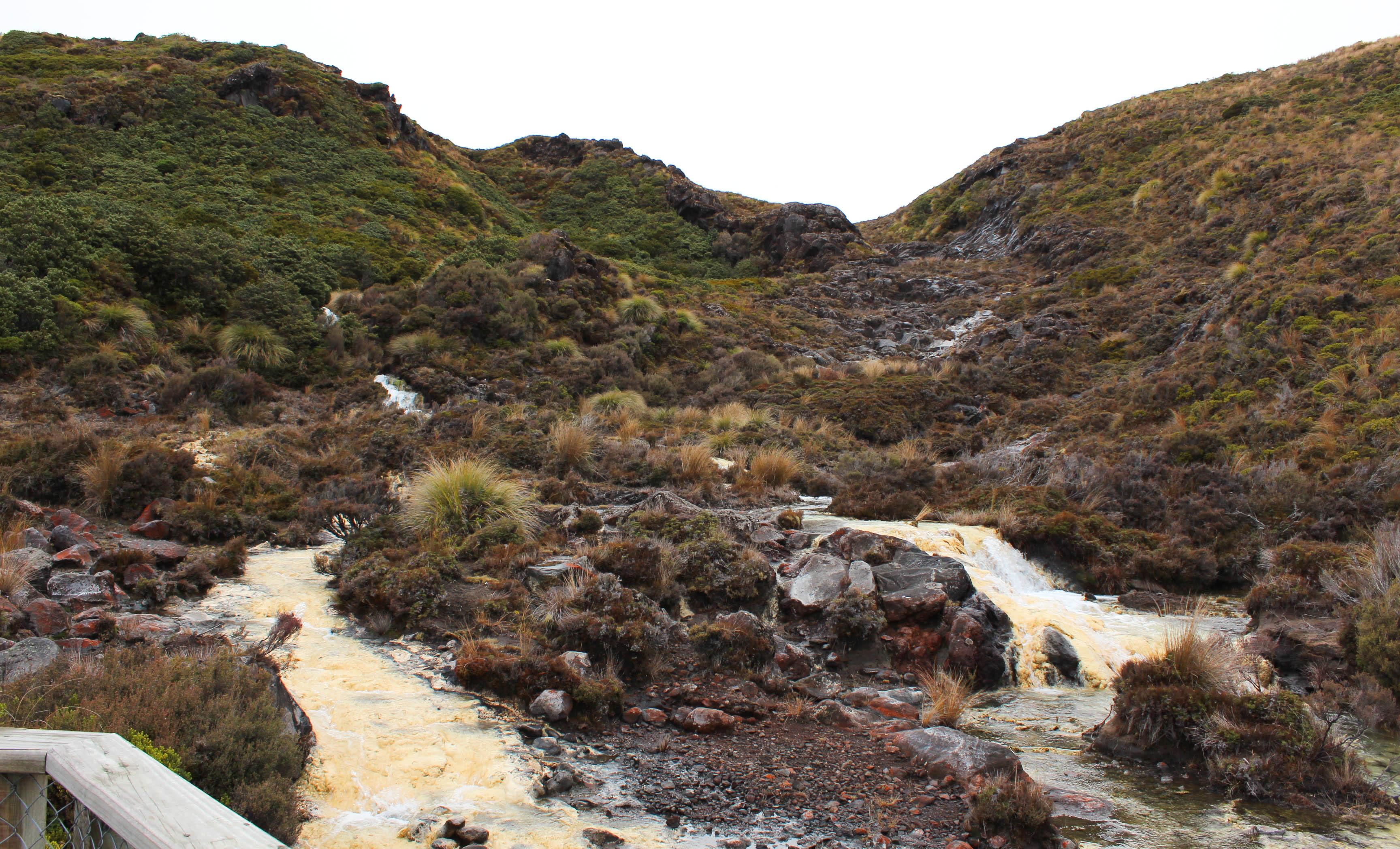 Nouvelle Zélande - Tongariri national parc - Les lubies de louise (14 sur 25)