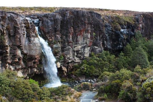 Nouvelle Zélande - Tongariri national parc - Les lubies de louise (20 sur 25)