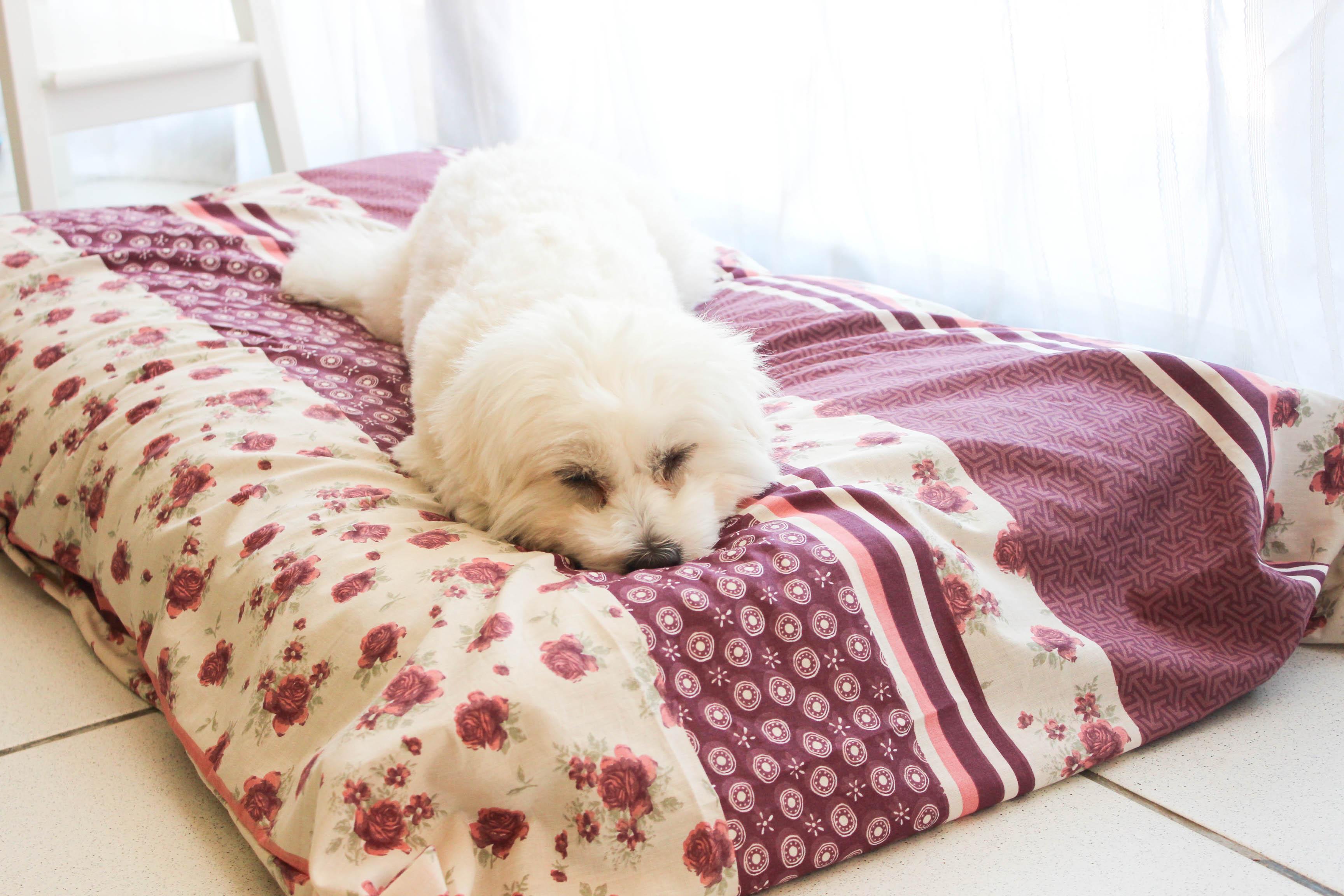 Un tapis de princesse pour flora diy les lubies de louise - Tapis gazon pour chien ...