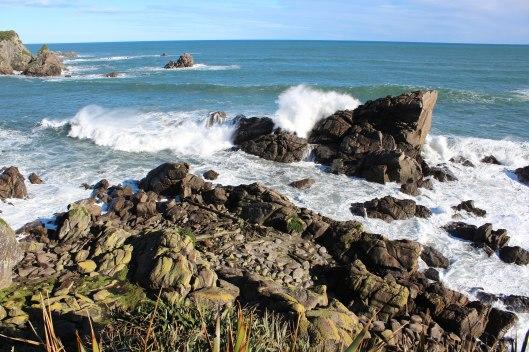 Nouvelle Zélande - Cape Foulwind - les lubies de louise (14 sur 21)