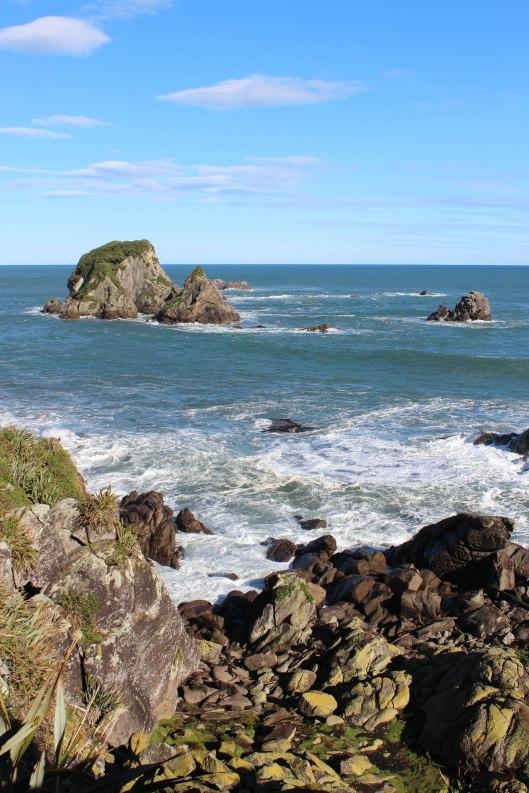 Nouvelle Zélande - Cape Foulwind - les lubies de louise (15 sur 21)