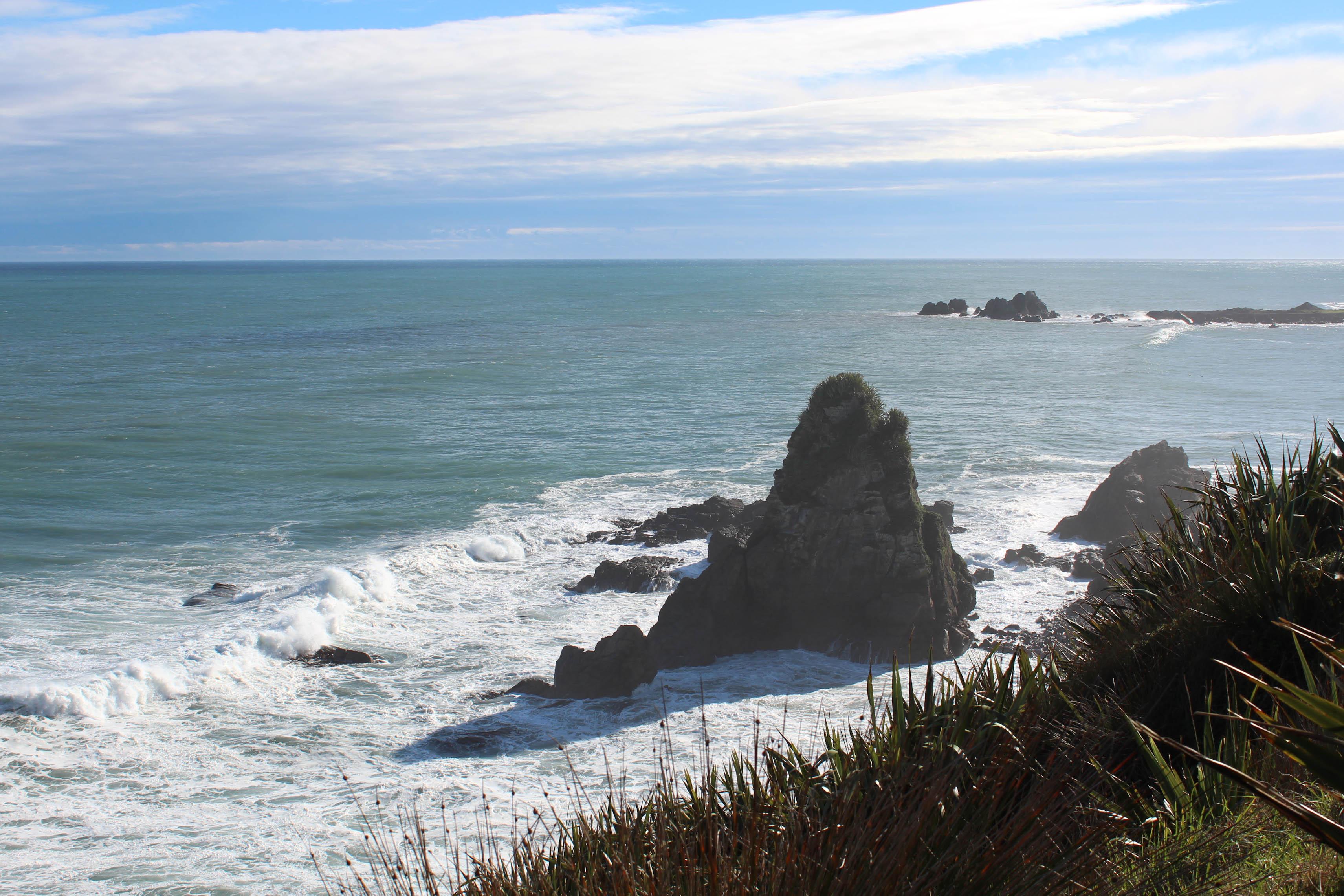 Nouvelle Zélande - Cape Foulwind - les lubies de louise (18 sur 21)