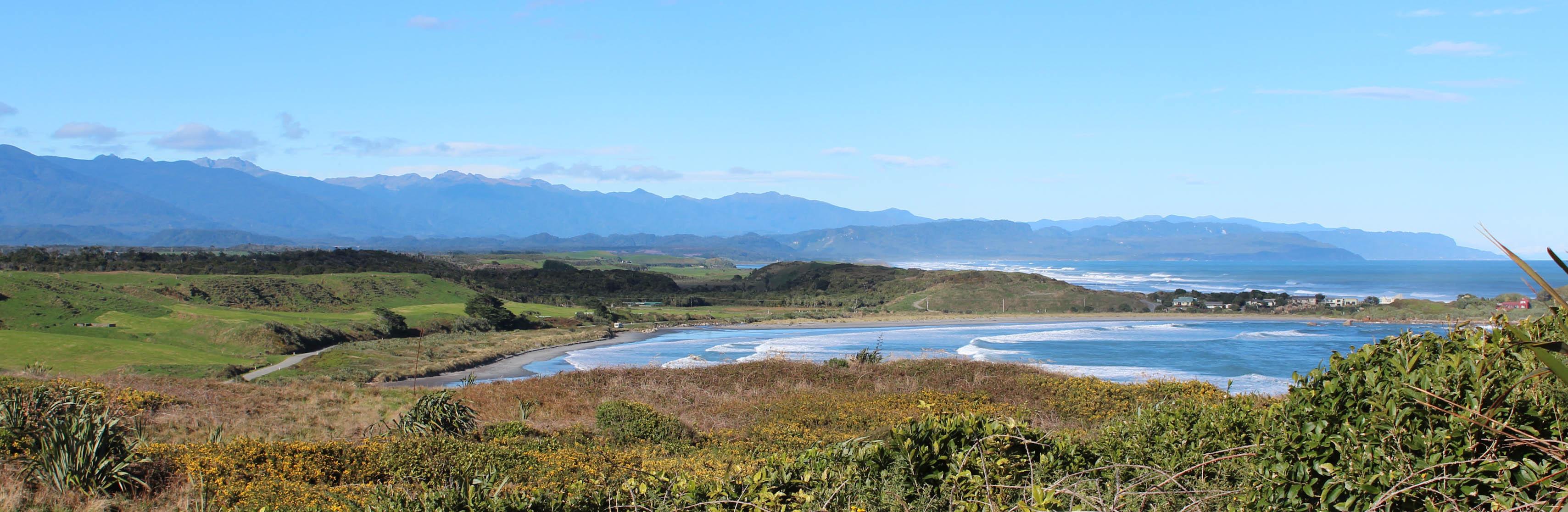 Nouvelle Zélande - Cape Foulwind - les lubies de louise (19 sur 21)