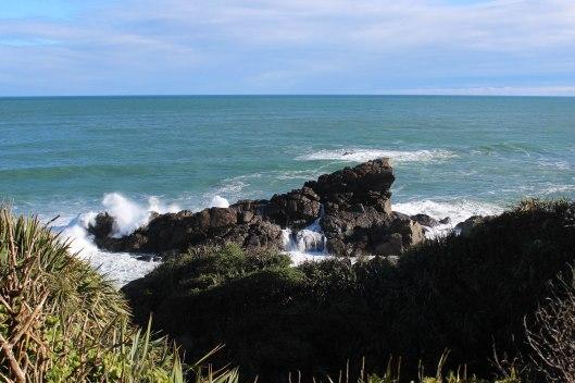 Nouvelle Zélande - Cape Foulwind - les lubies de louise (3 sur 21)