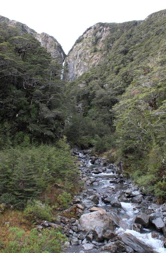 Nouvelle Zélande - Greymouth et Arthur's pass - les lubies de louise (11 sur 21)
