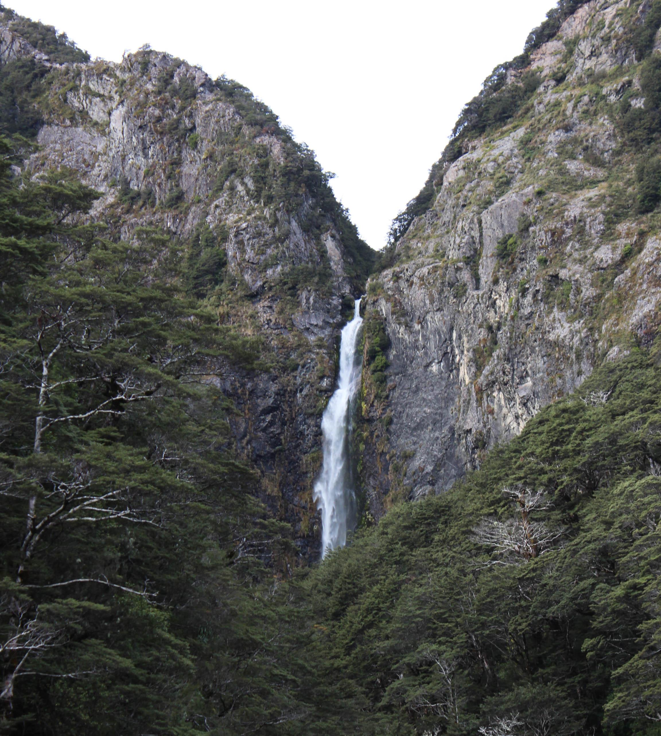 Nouvelle Zélande - Greymouth et Arthur's pass - les lubies de louise (12 sur 21)