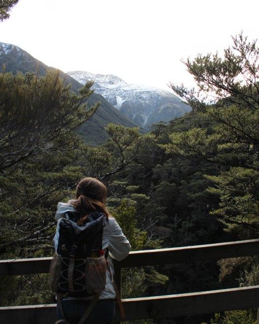 Nouvelle Zélande - Greymouth et Arthur's pass - les lubies de louise (13 sur 21)