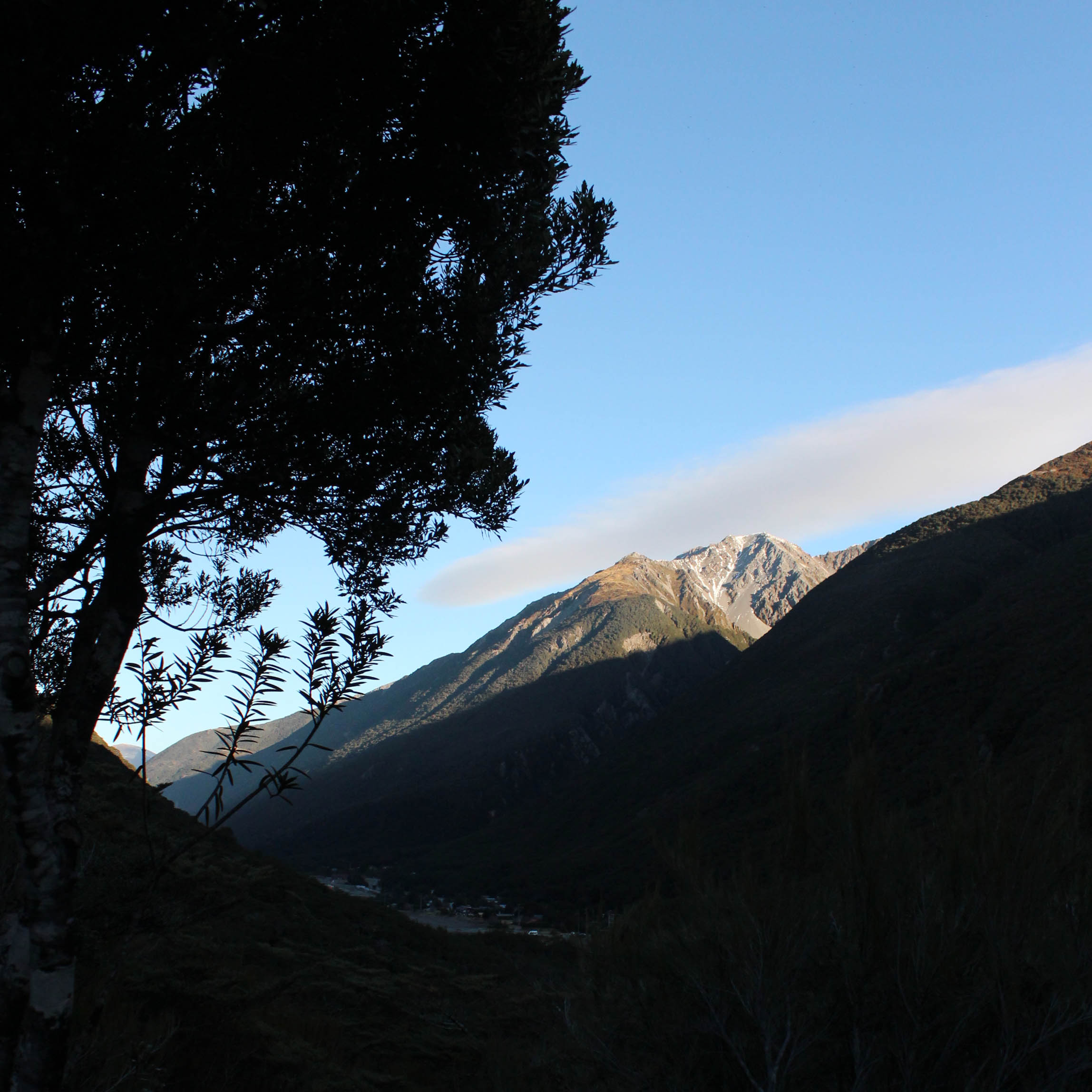 Nouvelle Zélande - Greymouth et Arthur's pass - les lubies de louise (18 sur 21)