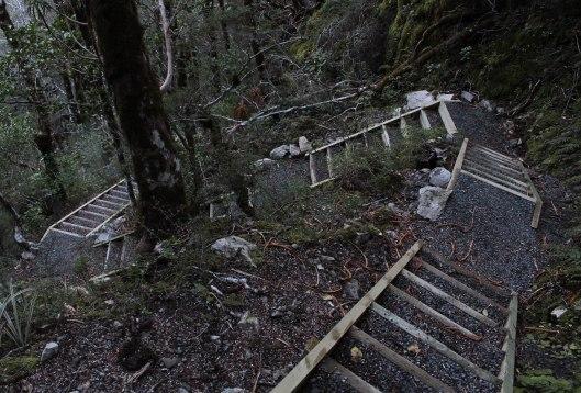 Nouvelle Zélande - Greymouth et Arthur's pass - les lubies de louise (20 sur 21)