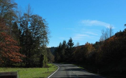 Nouvelle Zélande - Nelson & buller gorge swingbridge - les lubies de Louise (11 sur 42)