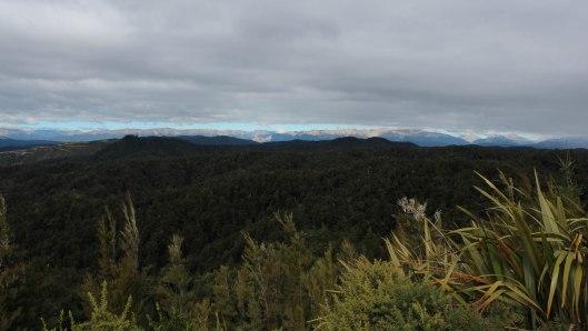 Nouvelle Zélande - Nelson & buller gorge swingbridge - les lubies de Louise (15 sur 42)