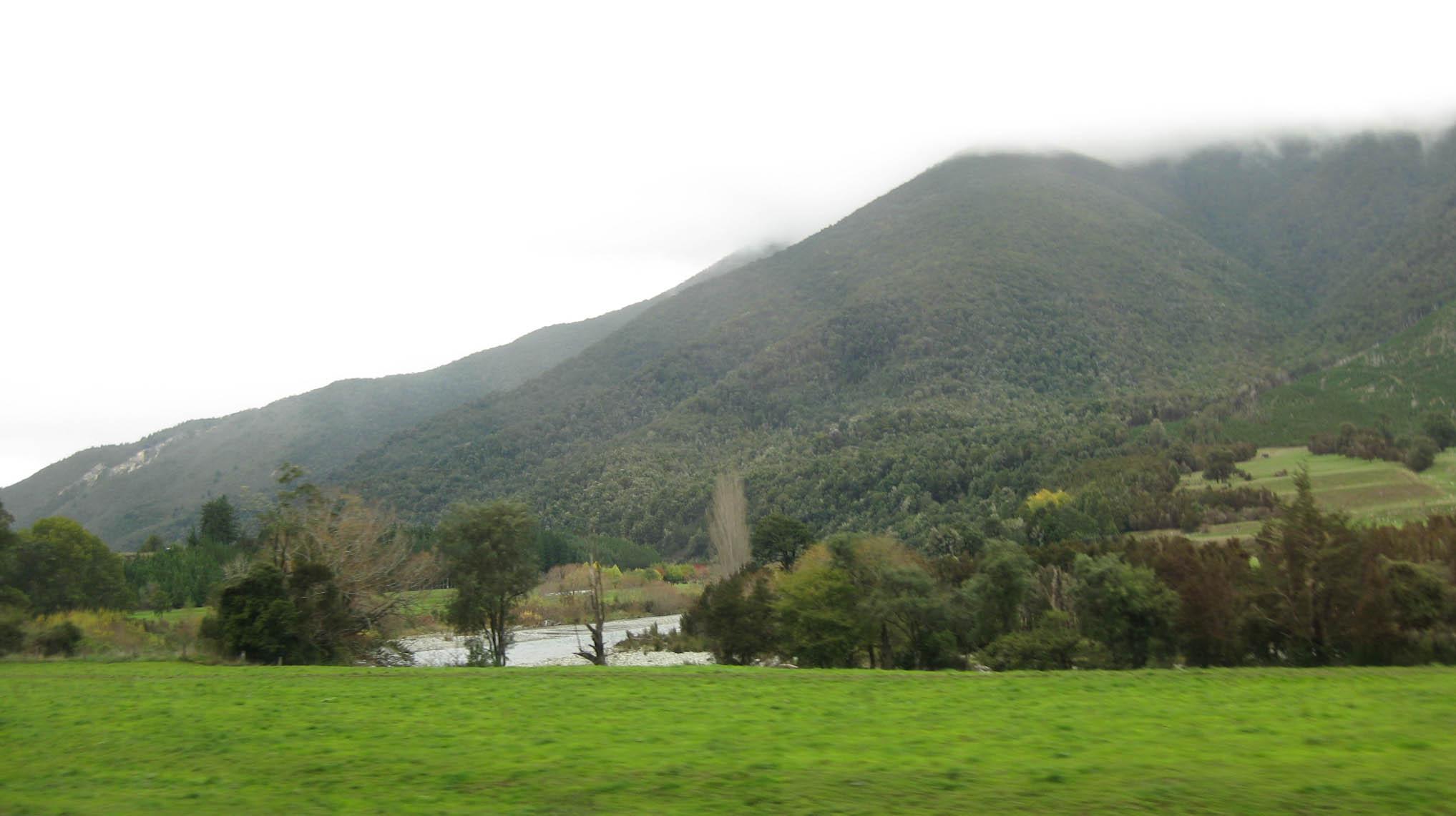 Nouvelle Zélande - Nelson & buller gorge swingbridge - les lubies de Louise (16 sur 42)
