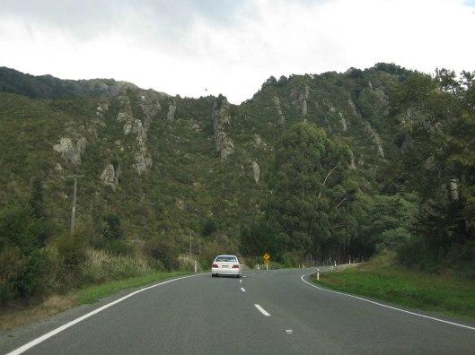Nouvelle Zélande - Nelson & buller gorge swingbridge - les lubies de Louise (18 sur 42)