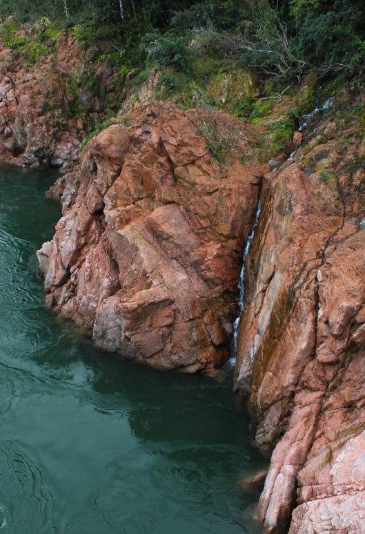 Nouvelle Zélande - Nelson & buller gorge swingbridge - les lubies de Louise (20 sur 42)