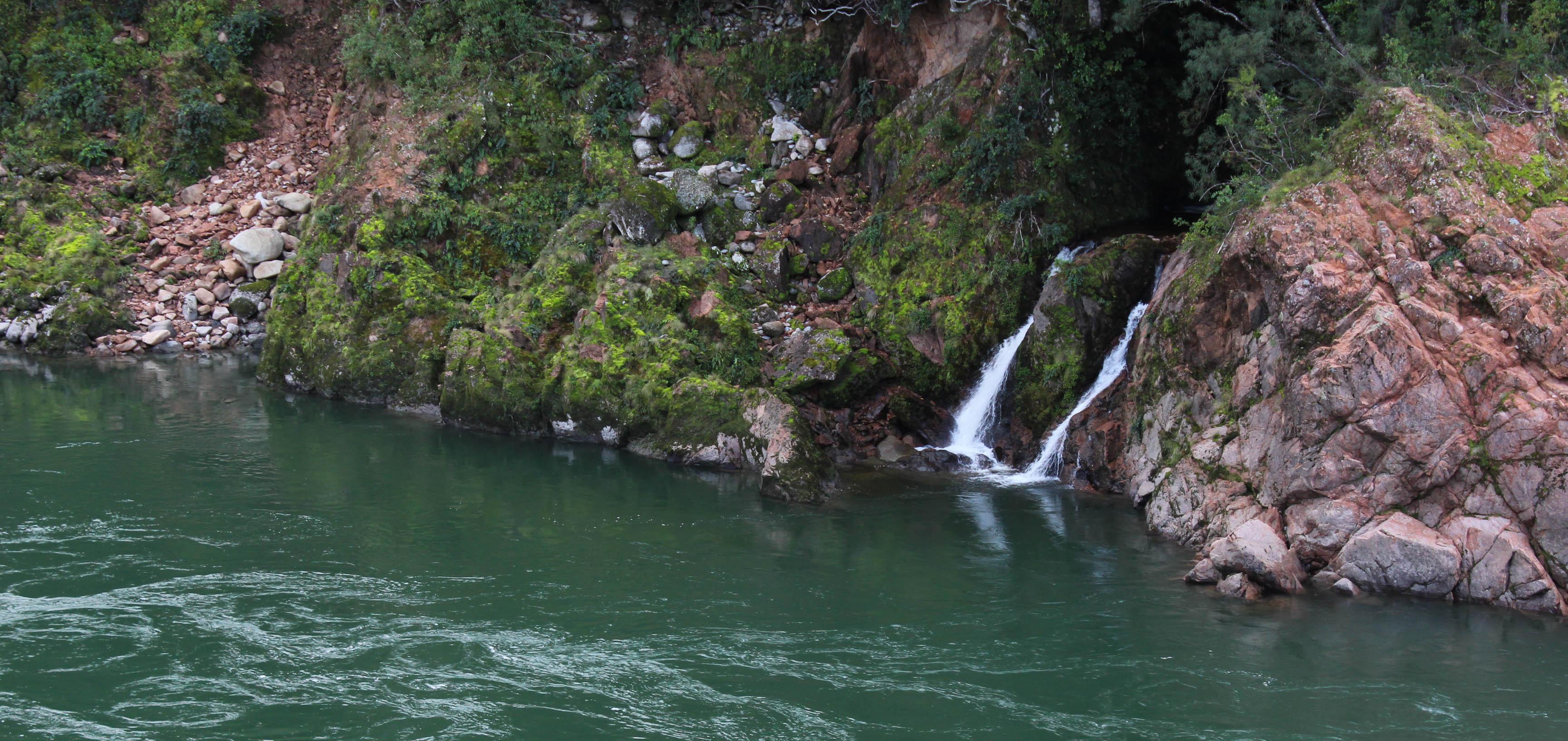 Nouvelle Zélande - Nelson & buller gorge swingbridge - les lubies de Louise (22 sur 42)