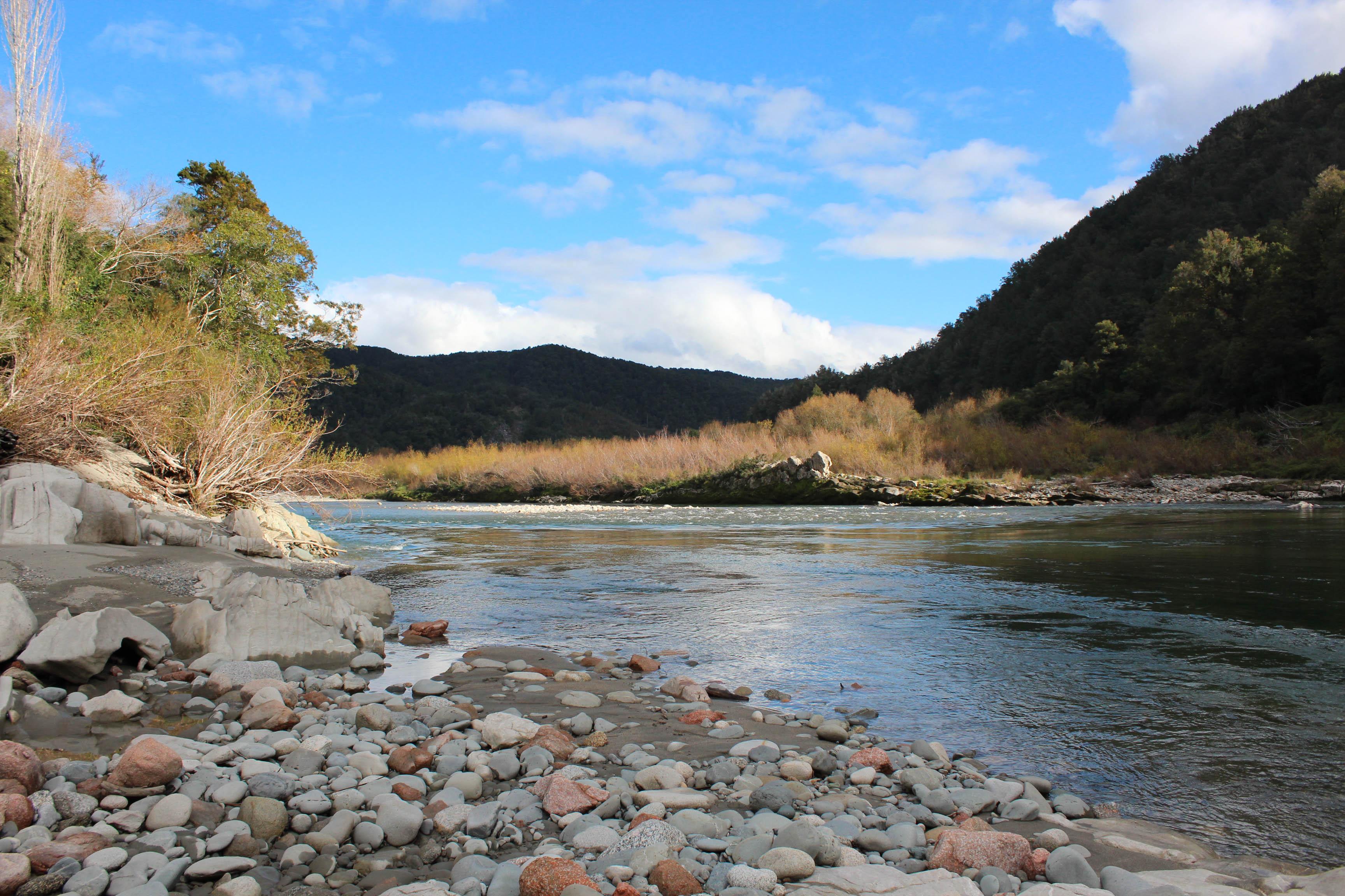 Nouvelle Zélande - Nelson & buller gorge swingbridge - les lubies de Louise (24 sur 42)