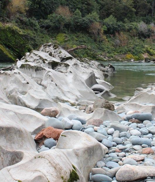 Nouvelle Zélande - Nelson & buller gorge swingbridge - les lubies de Louise (26 sur 42)