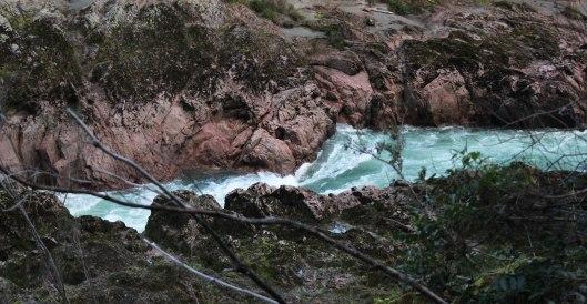 Nouvelle Zélande - Nelson & buller gorge swingbridge - les lubies de Louise (30 sur 42)