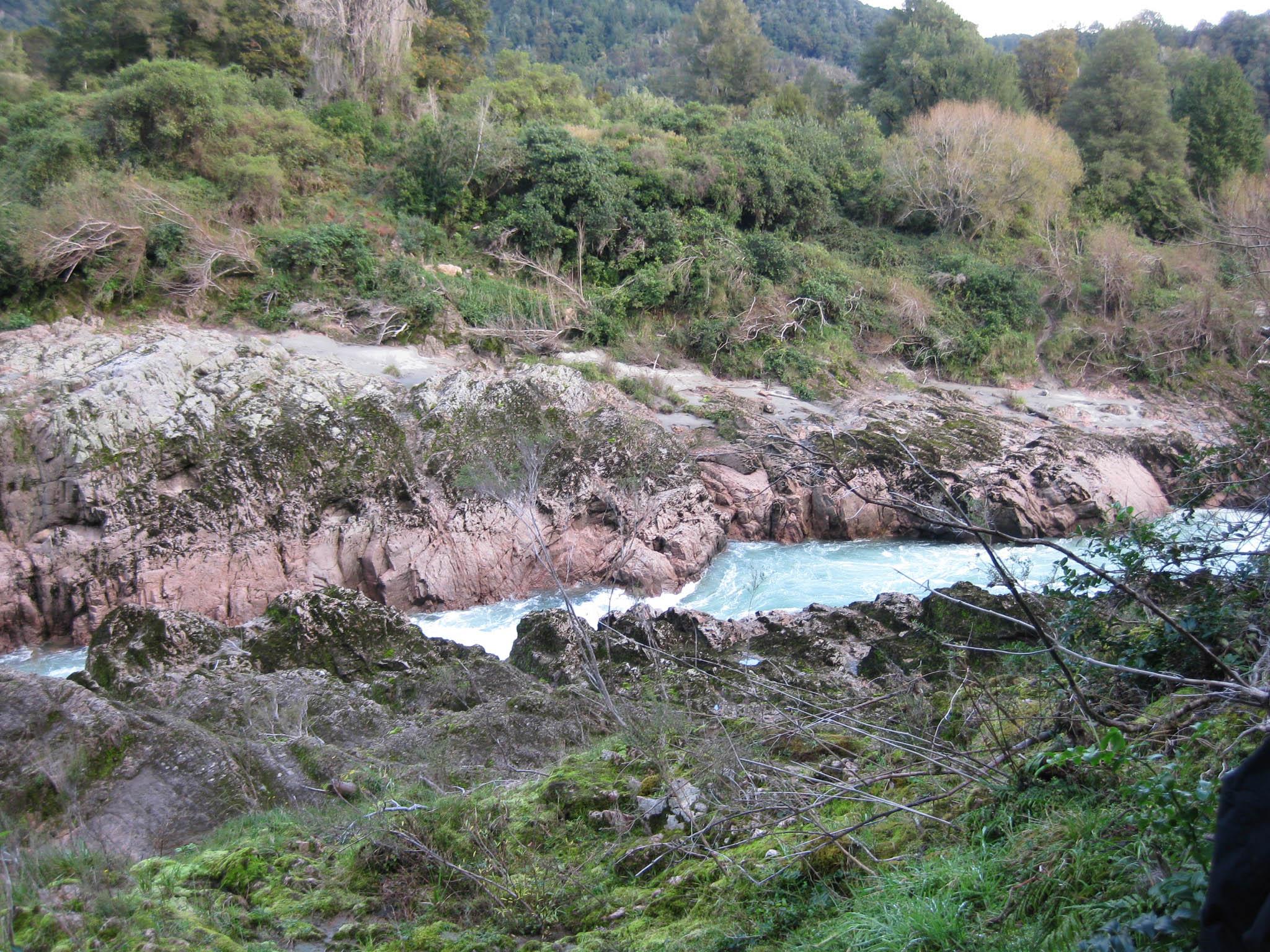 Nouvelle Zélande - Nelson & buller gorge swingbridge - les lubies de Louise (32 sur 42)