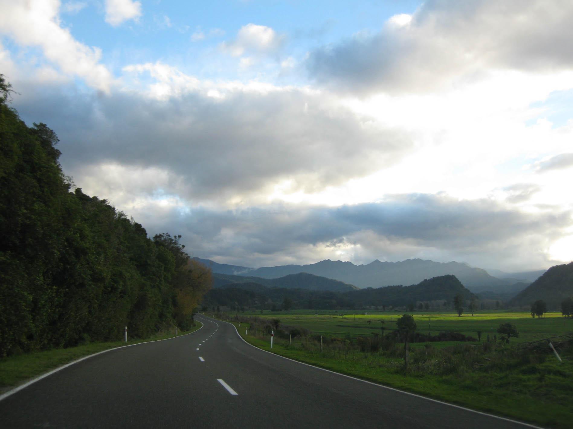 Nouvelle Zélande - Nelson & buller gorge swingbridge - les lubies de Louise (35 sur 42)