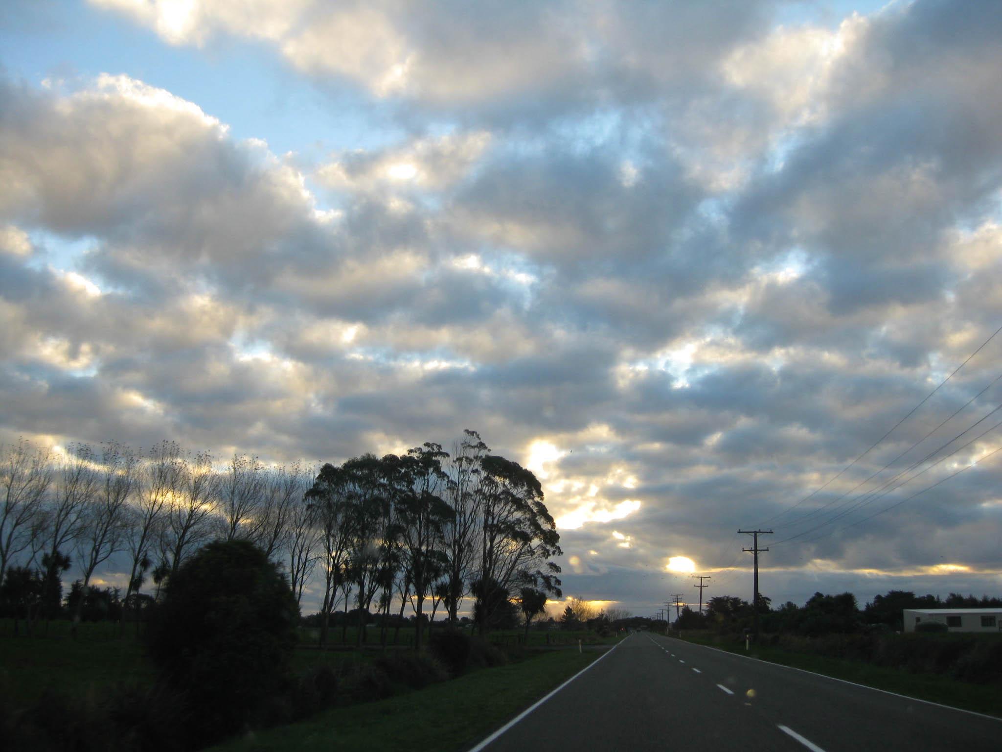 Nouvelle Zélande - Nelson & buller gorge swingbridge - les lubies de Louise (39 sur 42)