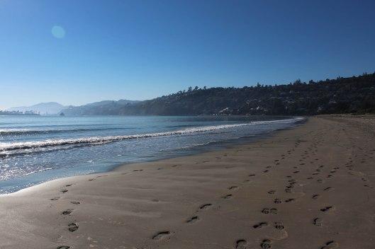 Nouvelle Zélande - Nelson & buller gorge swingbridge - les lubies de Louise (4 sur 42)