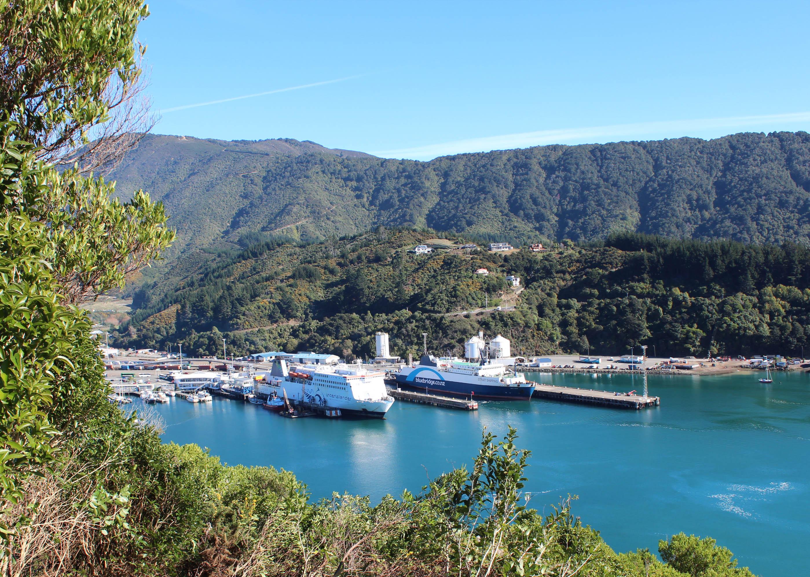 Nouvelle Zélande - Piction vers Nelson - les lubies de Louise (10 sur 19)