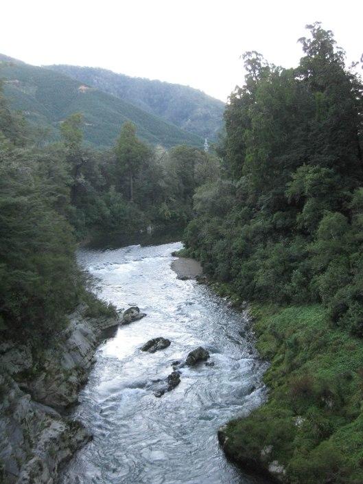 Nouvelle Zélande - Piction vers Nelson - les lubies de Louise (15 sur 19)