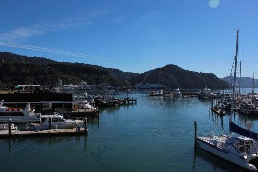 Nouvelle Zélande - Piction vers Nelson - les lubies de Louise (2 sur 19)