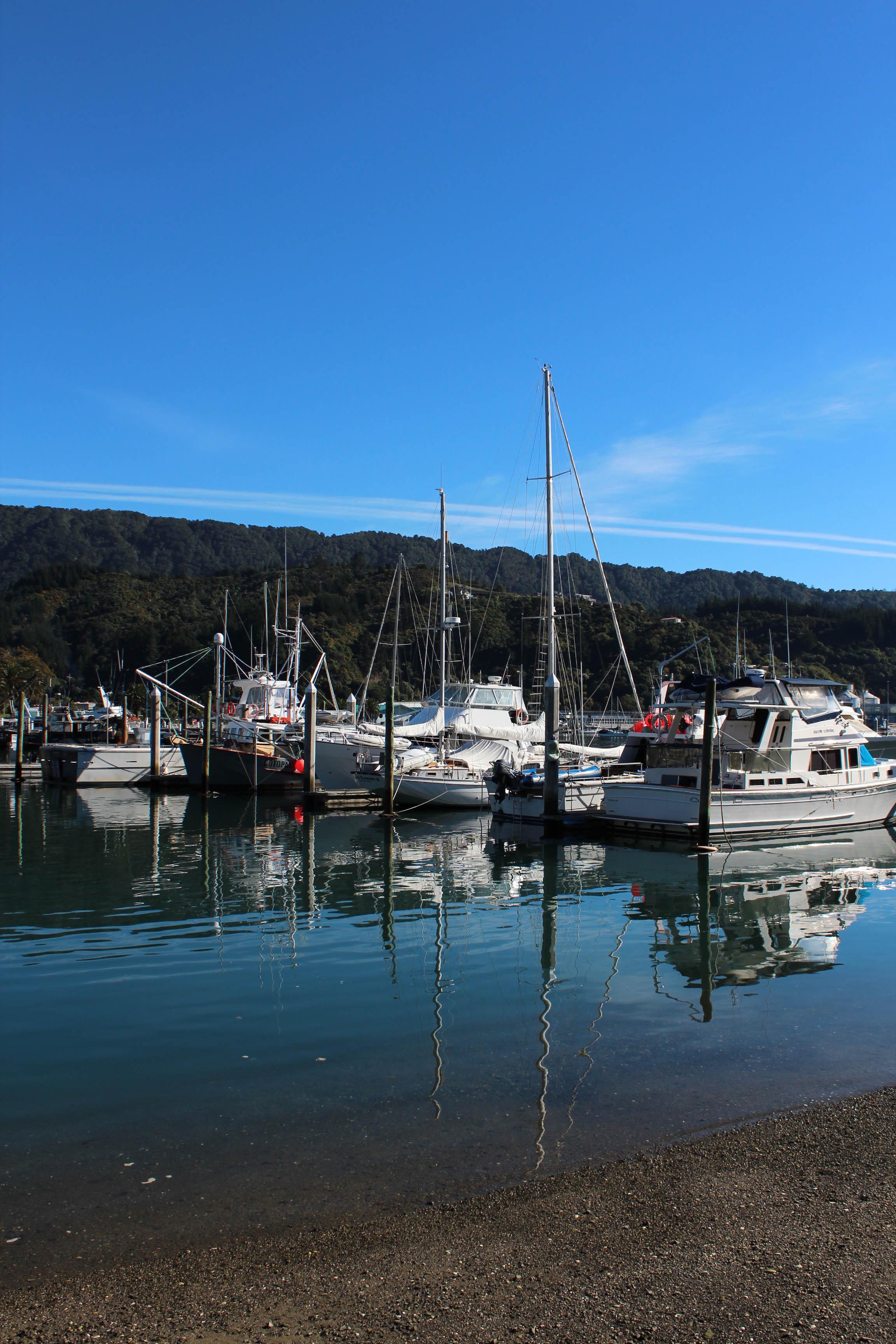 Nouvelle Zélande - Piction vers Nelson - les lubies de Louise (3 sur 19)
