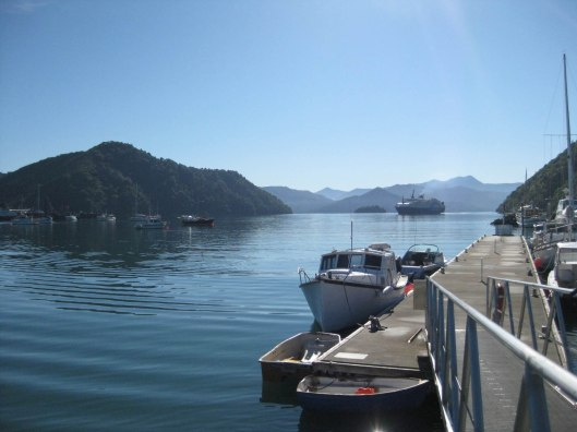 Nouvelle Zélande - Piction vers Nelson - les lubies de Louise (4 sur 19)