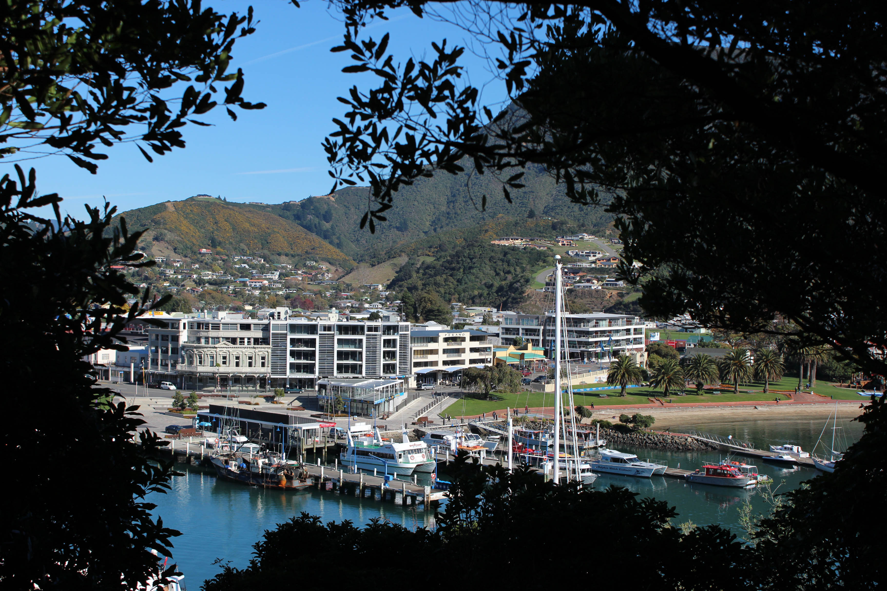 Nouvelle Zélande - Piction vers Nelson - les lubies de Louise (6 sur 19)