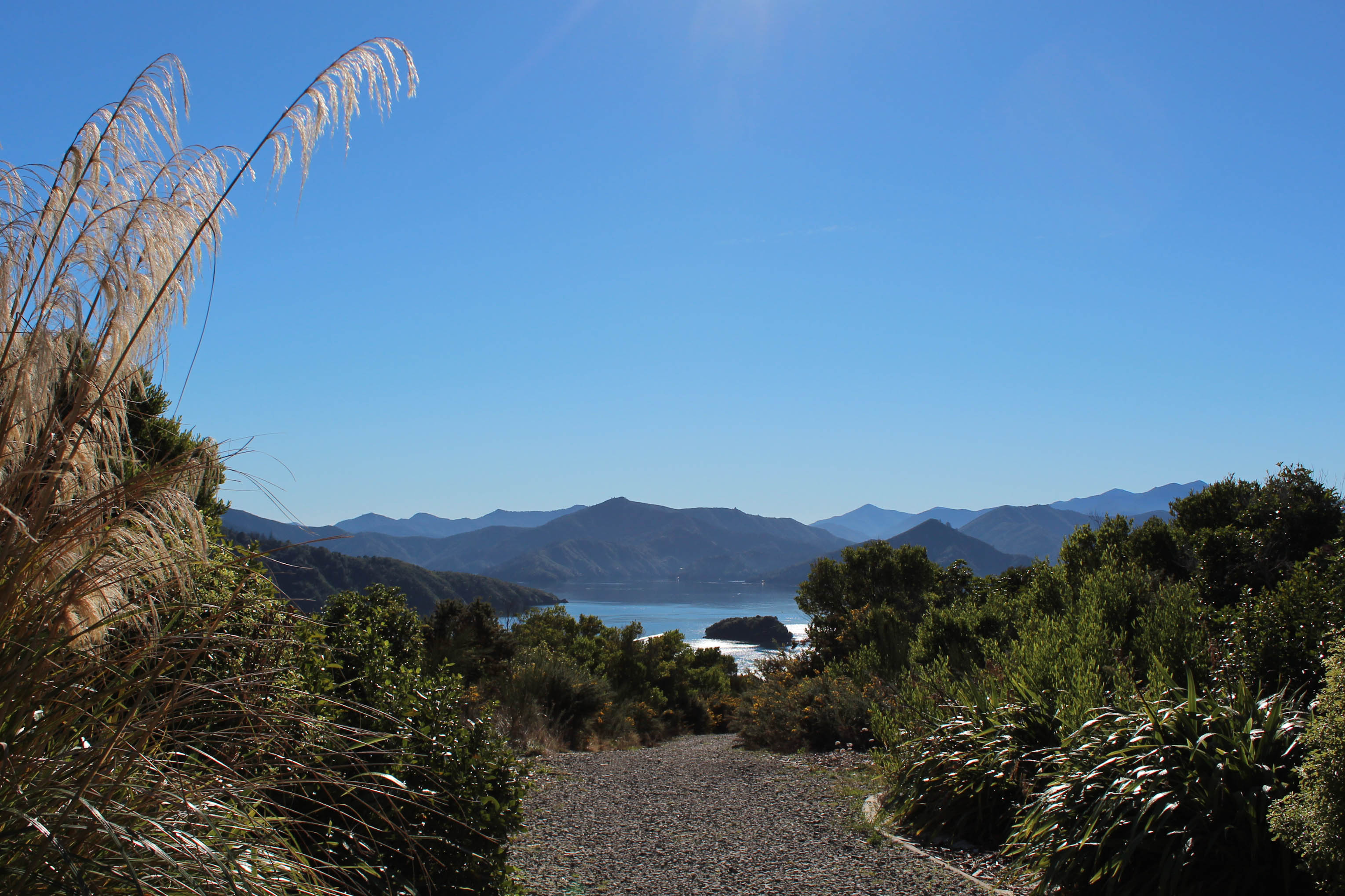 Nouvelle Zélande - Piction vers Nelson - les lubies de Louise (8 sur 19)