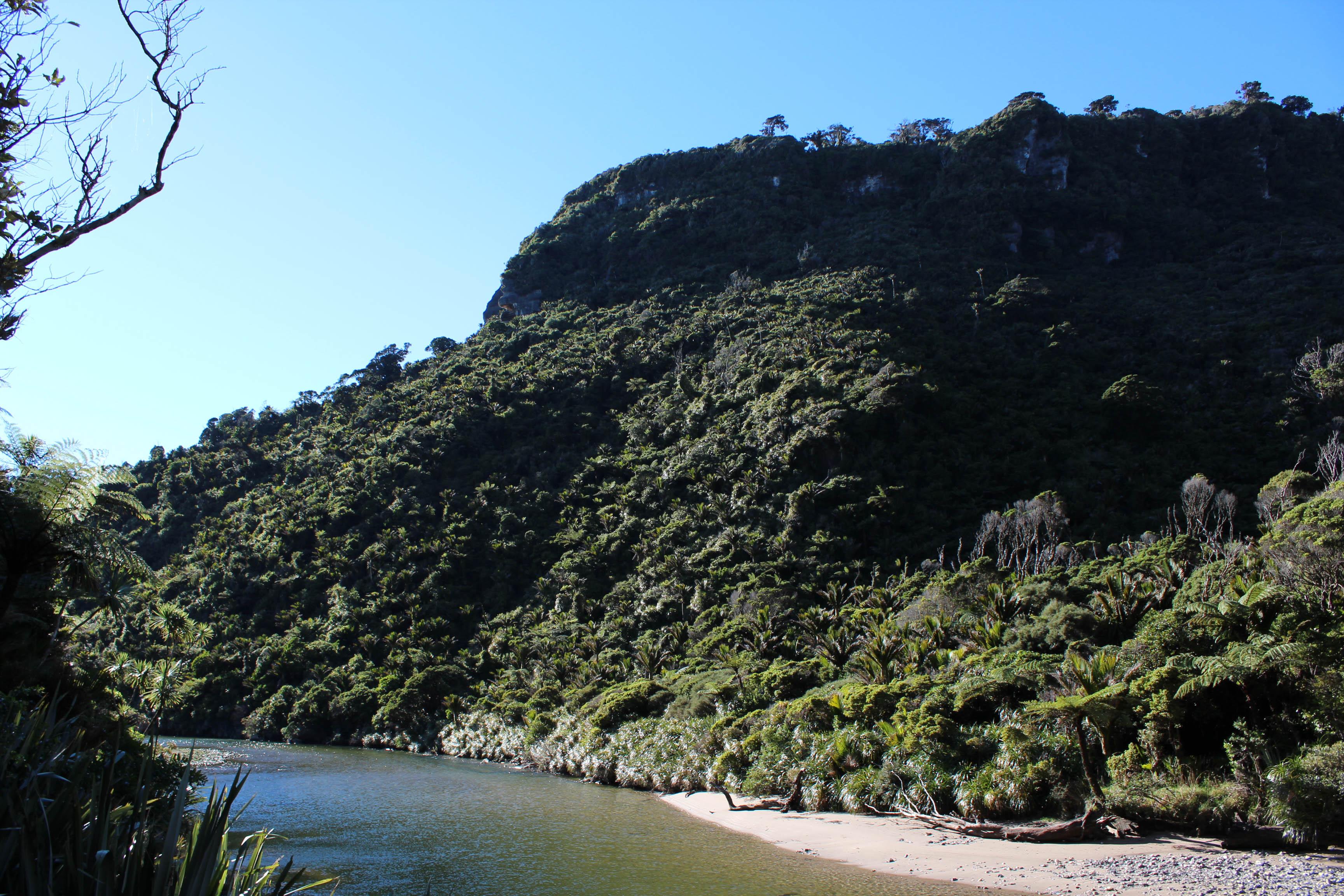 Nouvelle Zélande - Punakaiki - les lubies de louise (1 sur 11)