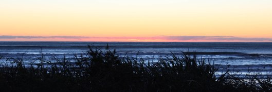 Nouvelle Zélande - Punakaiki - les lubies de louise (10 sur 11)
