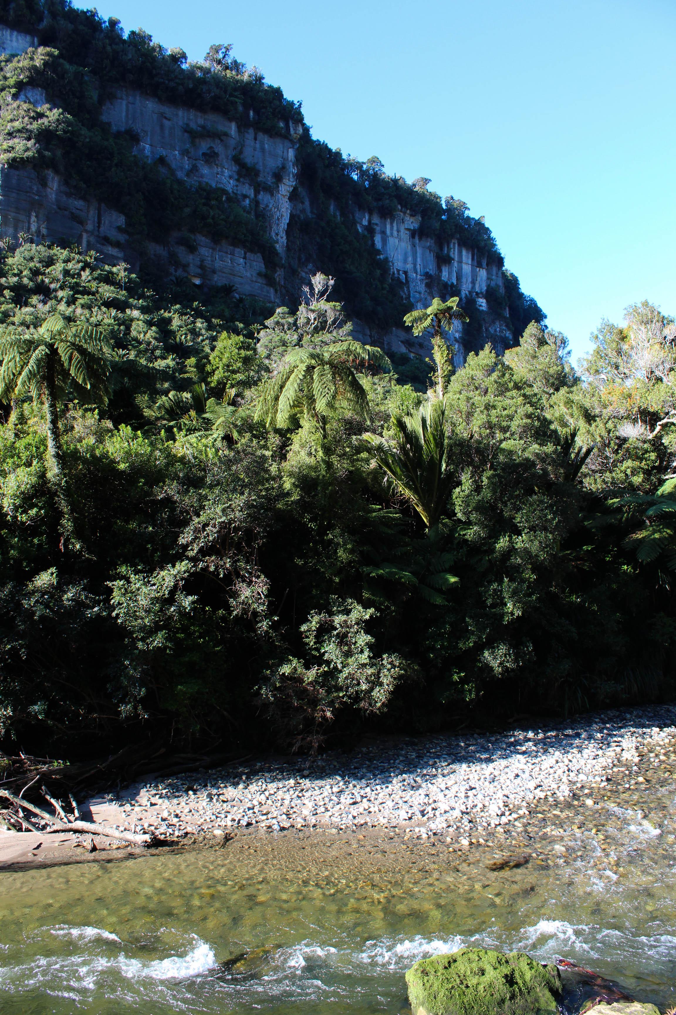 Nouvelle Zélande - Punakaiki - les lubies de louise (2 sur 5)
