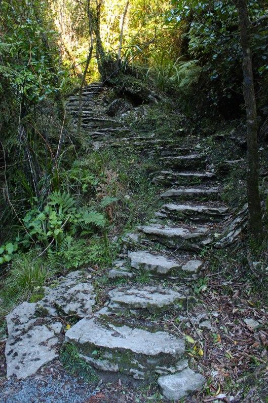 Nouvelle Zélande - Punakaiki - les lubies de louise (5 sur 11)