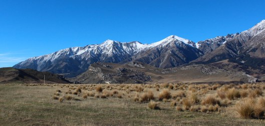 Nouvelle Zélande - Arthur's pass & Akaroa - les lubies de louise (12 sur 46)
