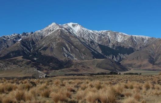 Nouvelle Zélande - Arthur's pass & Akaroa - les lubies de louise (15 sur 46)