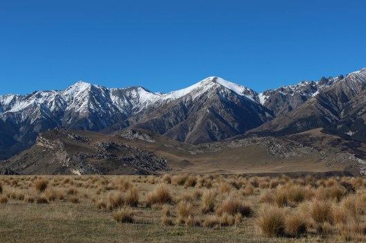 Nouvelle Zélande - Arthur's pass & Akaroa - les lubies de louise (16 sur 46)