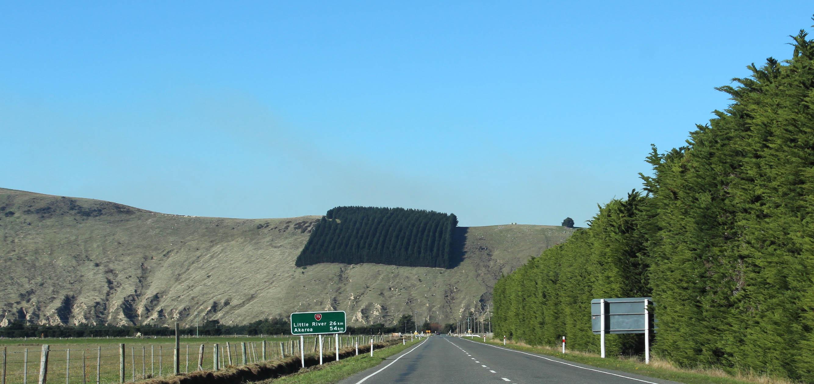 Nouvelle Zélande - Arthur's pass & Akaroa - les lubies de louise (18 sur 46)