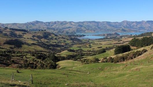 Nouvelle Zélande - Arthur's pass & Akaroa - les lubies de louise (19 sur 46)