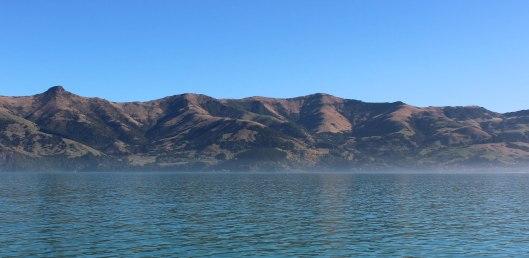 Nouvelle Zélande - Arthur's pass & Akaroa - les lubies de louise (23 sur 46)