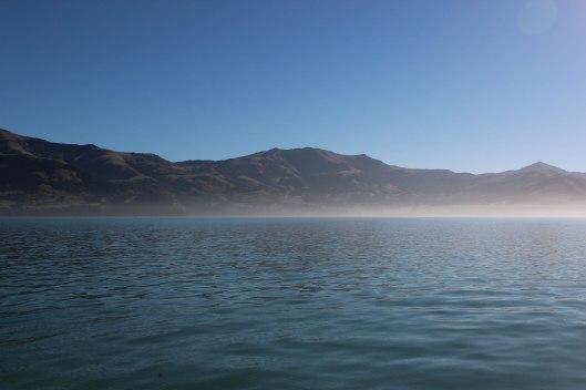 Nouvelle Zélande - Arthur's pass & Akaroa - les lubies de louise (25 sur 46)