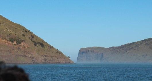 Nouvelle Zélande - Arthur's pass & Akaroa - les lubies de louise (26 sur 46)
